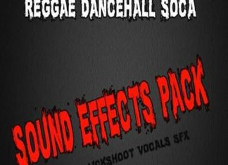 sound effects pack – reggae dancehall soca