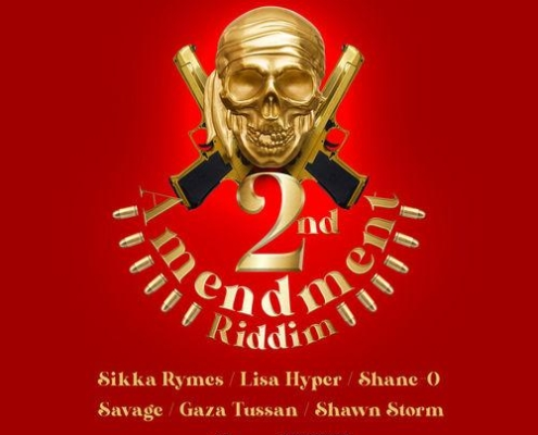 2nd Ammendment Riddim