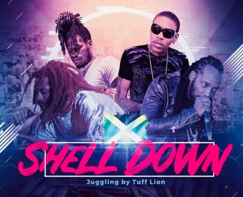 Dancehall Mixtape 2019 Shell Down
