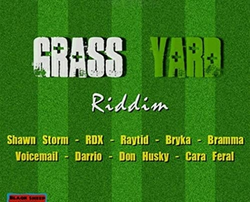 Grass Yard Riddim