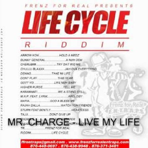 Life Cycle Riddim