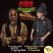One Journey Riddim Leaf Of Life Production