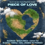 Piece Of Love Riddim