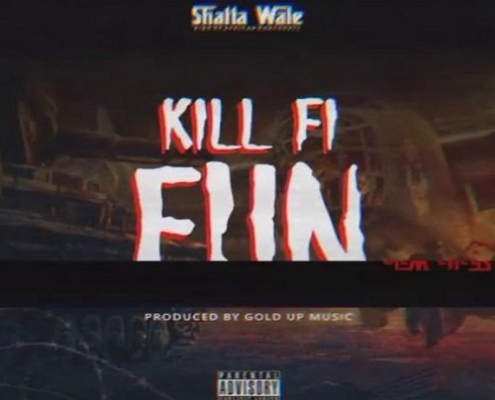 Shatta Wale Kill Fi Fun