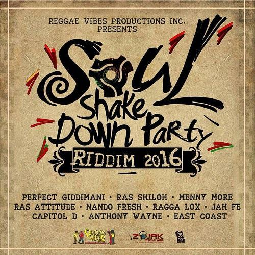 Soul Shake Down Party Riddim