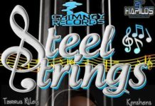 steel strings riddim – chimney records
