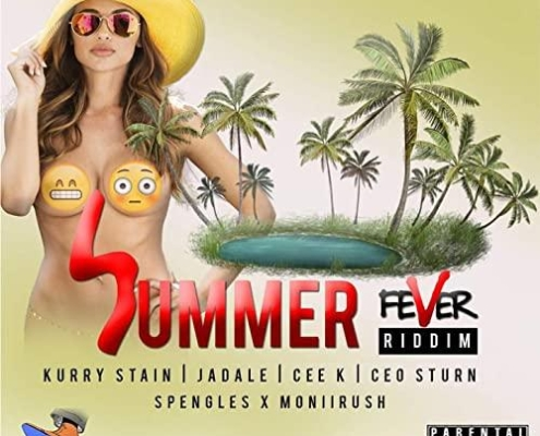 Summer Fever Riddim