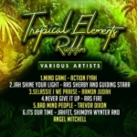 Tropical Elements Riddim
