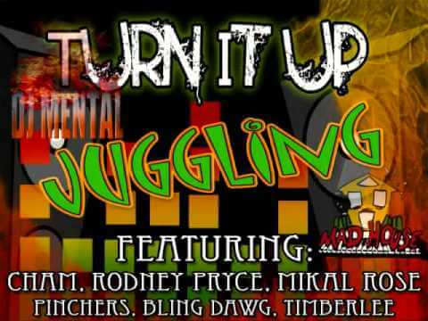 Turn It Up Riddim